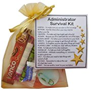 Administrator Survival Kit Gift  - New job, work gift, Secret santa gift for colleague, gift for administrator gift