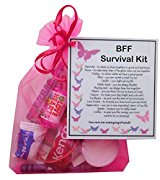 BFF Survival Kit Gift  - BFF Gift, Ideal birthday gift for Friend, excellent Friendship gift, BFF present, present for BFF, BFF Gifts for Friend