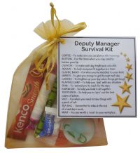 Deputy Manager Survival Kit Gift  - New job, work gift, Secret santa gift for deputy manager