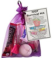 NQT Survival Kit Teacher Gift  - Newly Qualified Teacher gift for Christmas, New Teacher Secret Santa, funny student teacher gifts, thank you trainee teacher gift,