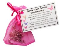 Special Friend Survival Charm Keyring - Handmade Special Friend Gift for Friend (Friend Birthday Gift, Friend Christmas Gift)